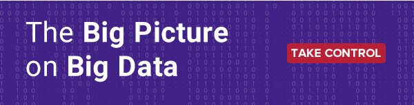 The Big Picture on Big Data