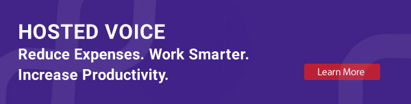 Hosted Voice. Reduce Expenses. Work Smarter. Increase Productivity.