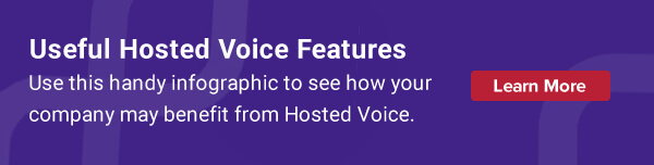 Useful Hosted Voice Features
